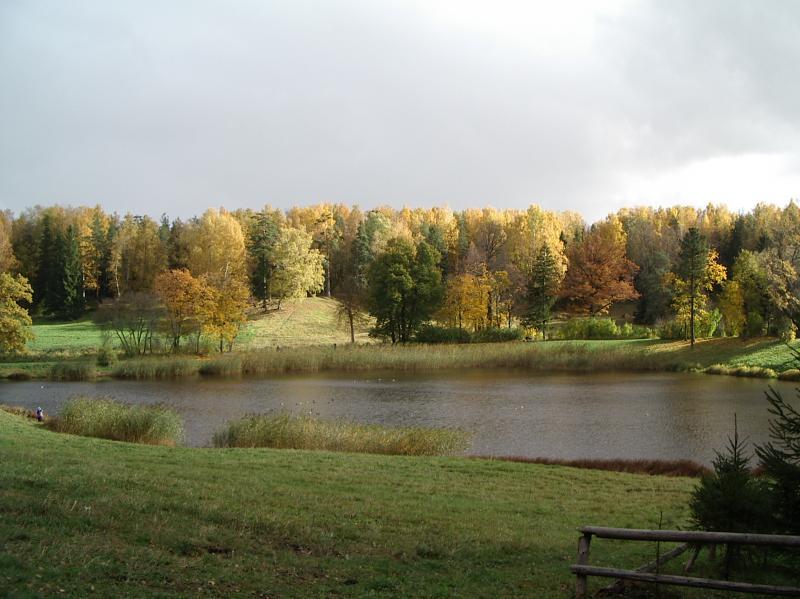 Поля осенью